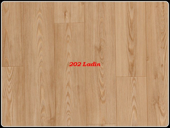 Ladin-202.jpg
